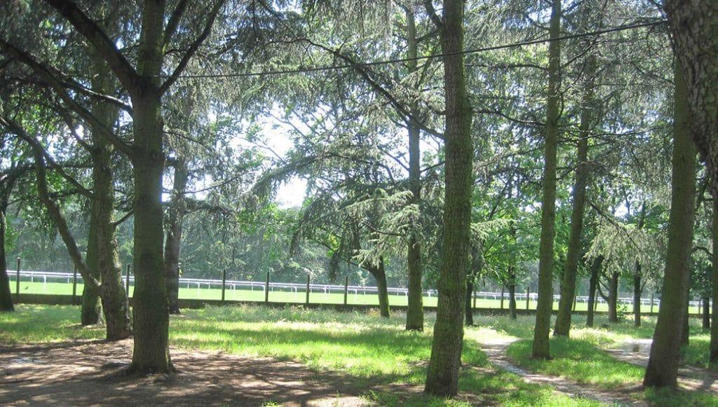 Parc de Parilly côté Hippodrome