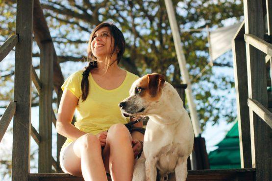 Educateur canin ou comportementaliste canin